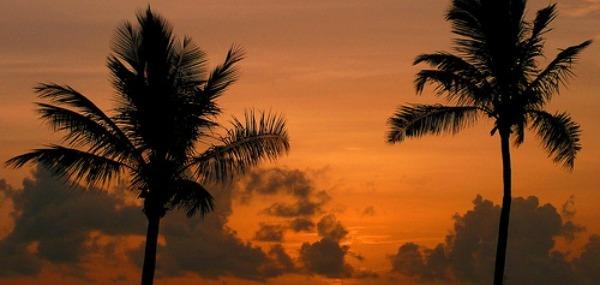 Destination Miami